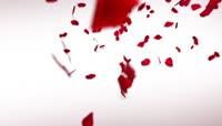 浪漫七夕情人节祝福小视频
