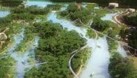 湿地公园三维动画视频素材下载