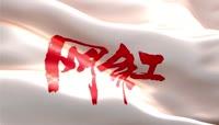 网红旗帜飘动视频素材
