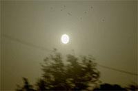 行驶中的汽车窗外风景风光景色_电线杆太阳