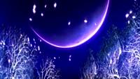 月夜粒子动态背景