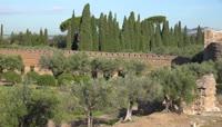 意大利蒂沃丽花园