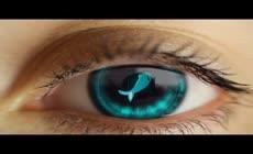 目光中的logo揭示