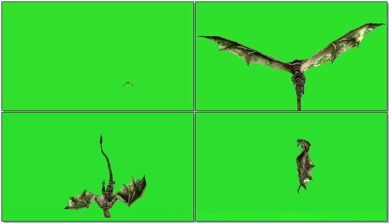 绿屏抠像飞龙怪兽