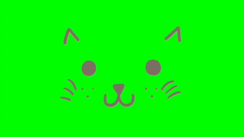绿屏抠像可爱猫咪表情