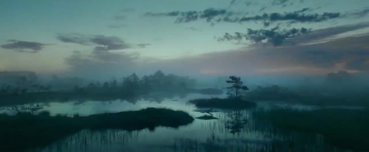 唯美湿地晨气景观
