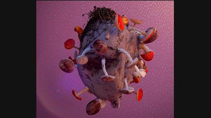 抽象石头上长的蘑菇