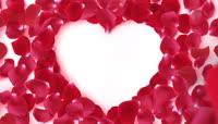 心形玫瑰花瓣边框