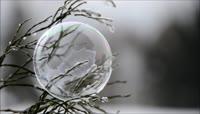 冰冻的泡泡