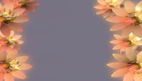 花朵旋转边框