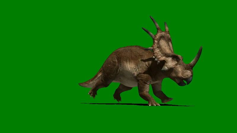 绿屏抠像奔跑的野牛龙恐龙