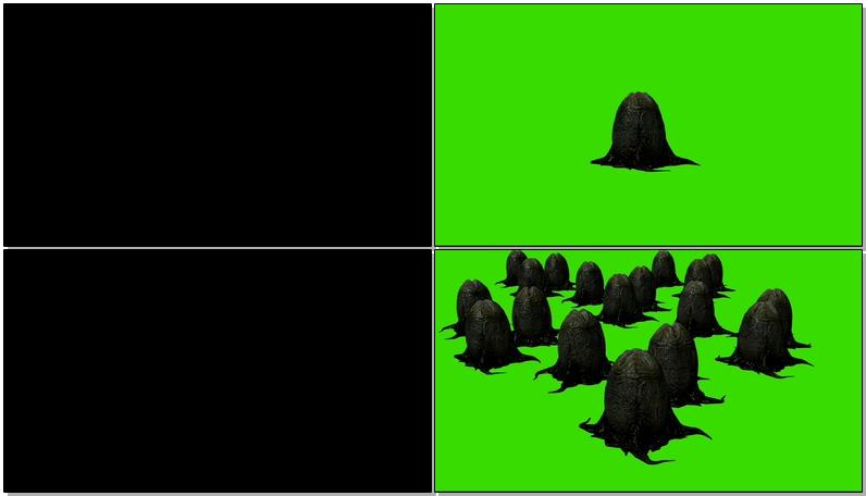 绿屏抠像异形蛋卵