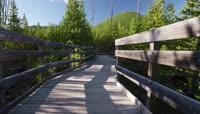 美国黄石国家森立公园高清实拍视频素材
