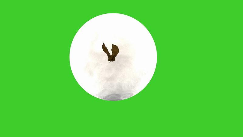 绿屏抠像蝙蝠