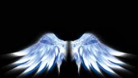 翅膀蔚蓝天使背景素材