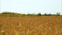 农业实拍\-收割水稻