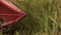 机械收割水稻