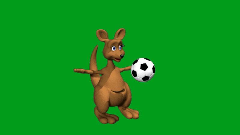绿屏抠像踢足球的袋鼠