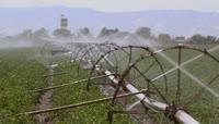 实拍农业\-灌溉