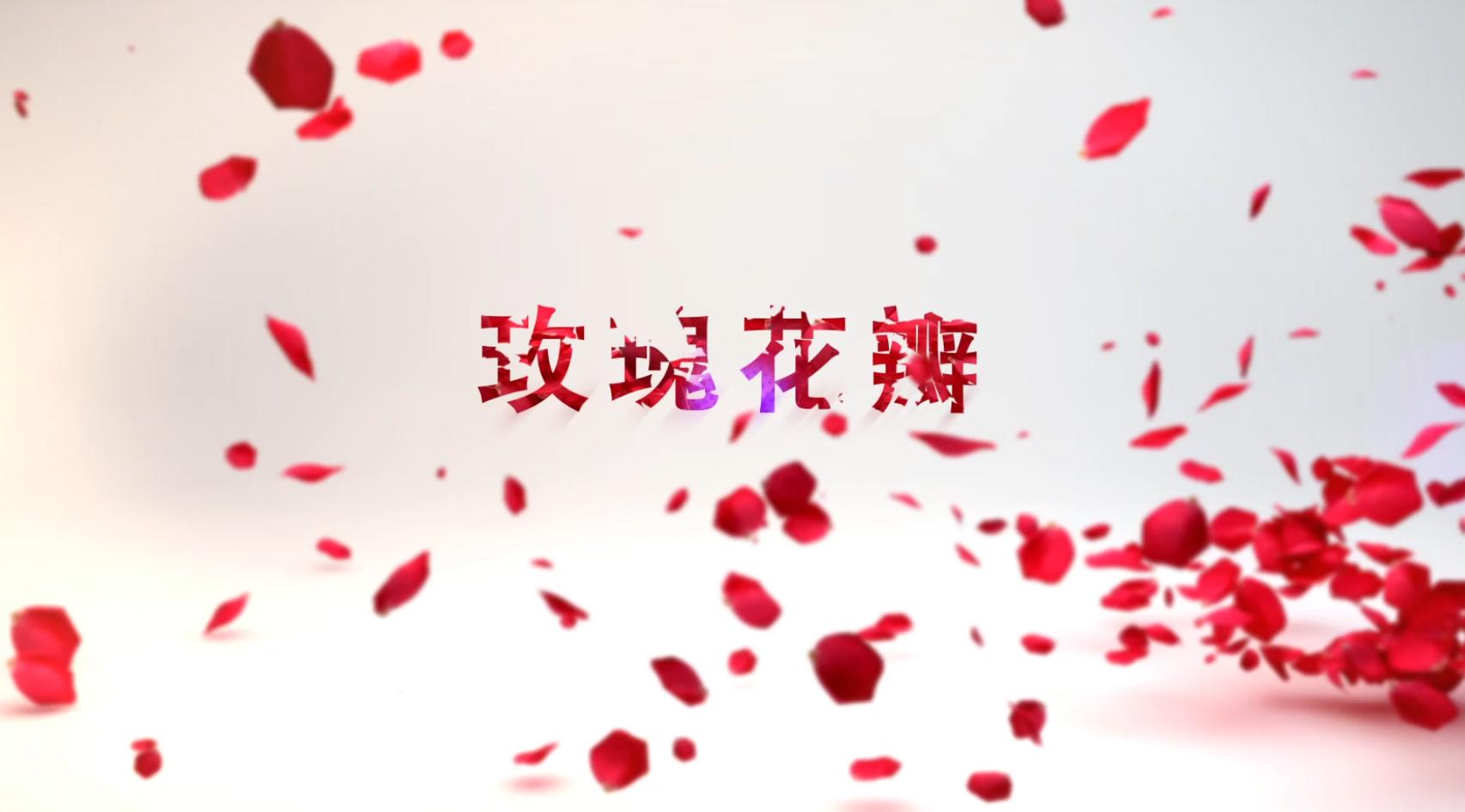 玫瑰花瓣开场片头AE模板