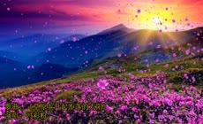 6\.草原上升起不落的太阳