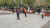 公园广场老年人幸福生活视频素材