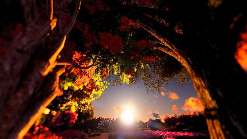 夕阳日落森林美景