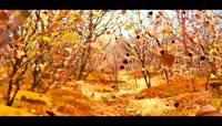 卡通3D树叶飘落动画视频素材