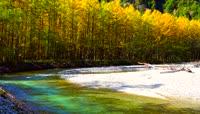 金秋十月美丽自然风光视频素材
