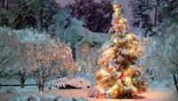 圣诞节新年元旦节舞台背景视频