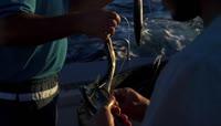 海洋动物生态保护 捕鱼业渔网 海底垃圾破坏环境