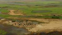 航拍埃及异域风情沙漠古村落建筑视频素材