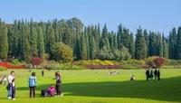 家庭周末公园草坪上散步实拍视频素材