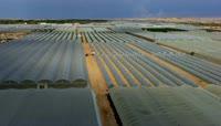 航拍蔬菜种植基地 温室大棚视频素材