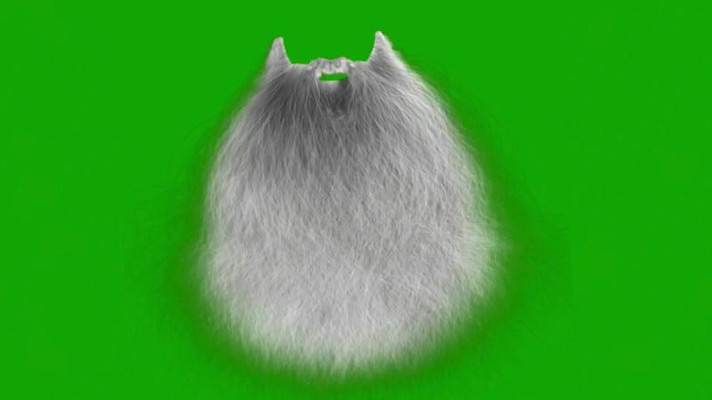 绿屏抠像圣诞老人白色胡须