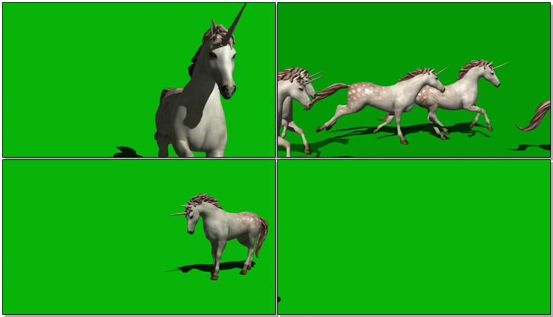 绿屏抠像奔跑独角白马