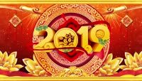 2019猪年新春过年拜年通道PR模板\(CC2017\)