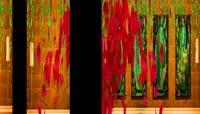 奇幻森林 精灵 全息纱幕 全息 全息婚礼 浪漫 婚礼 蘑菇 梅花鹿 老虎恐龙 蝴蝶 动物 花瓣 卡通森林 舞台背景 新年素材 led 海底世界 海底动物