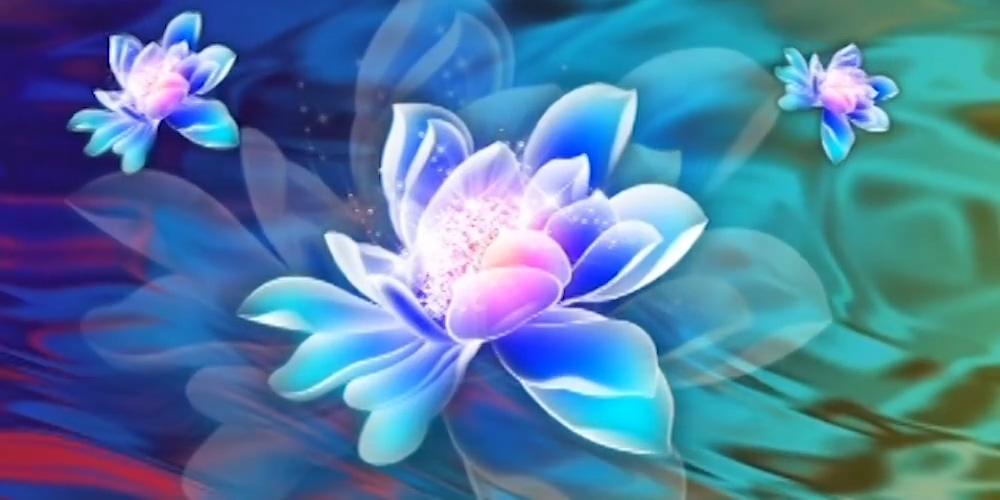 唯美水晶莲花唯美水晶莲花荷花花瓣水流水波视频素材背景
