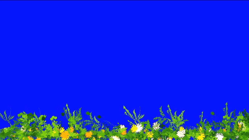绿屏抠像野花绿草