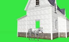 绿屏抠像奔跑的马匹