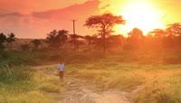 黎明晨光男孩野外行走实拍高清视频素材