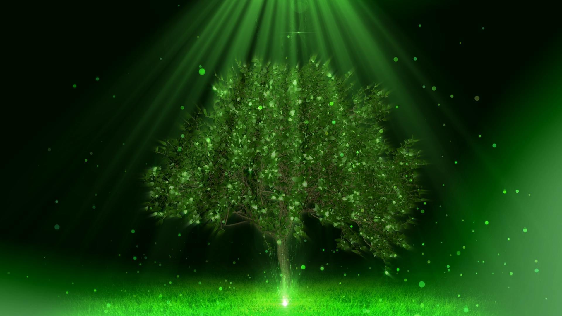 绿色粒子树