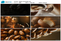 花生花生油植物油大豆食物油广告宣传实拍视频素材