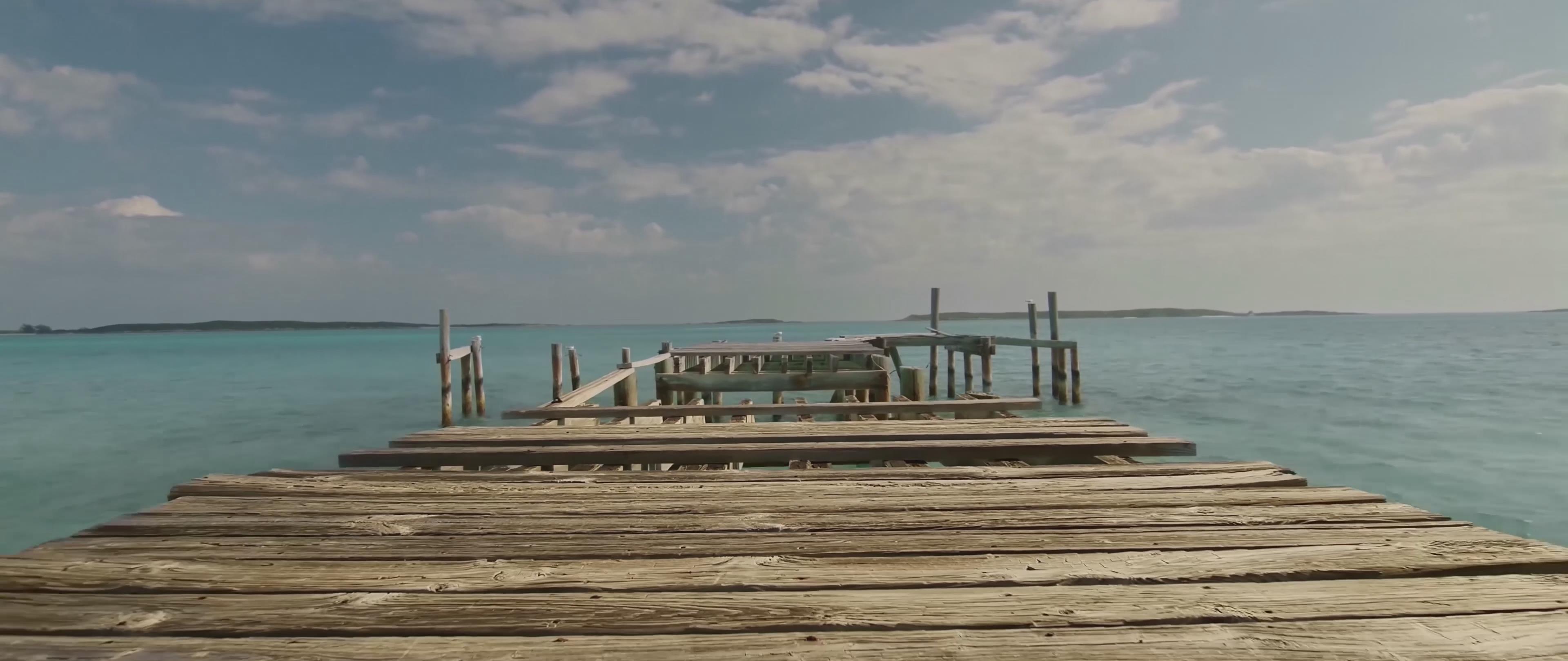 热带 海滩 花 木桥 港口 蜥蜴 岛 椰子树 猪 游泳 海鸥 船 鹤 延时 4k