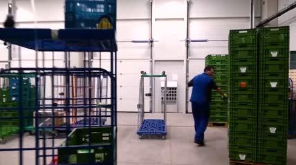 绿色新鲜蔬菜瓜果仓库运输批发零售实拍视频素材