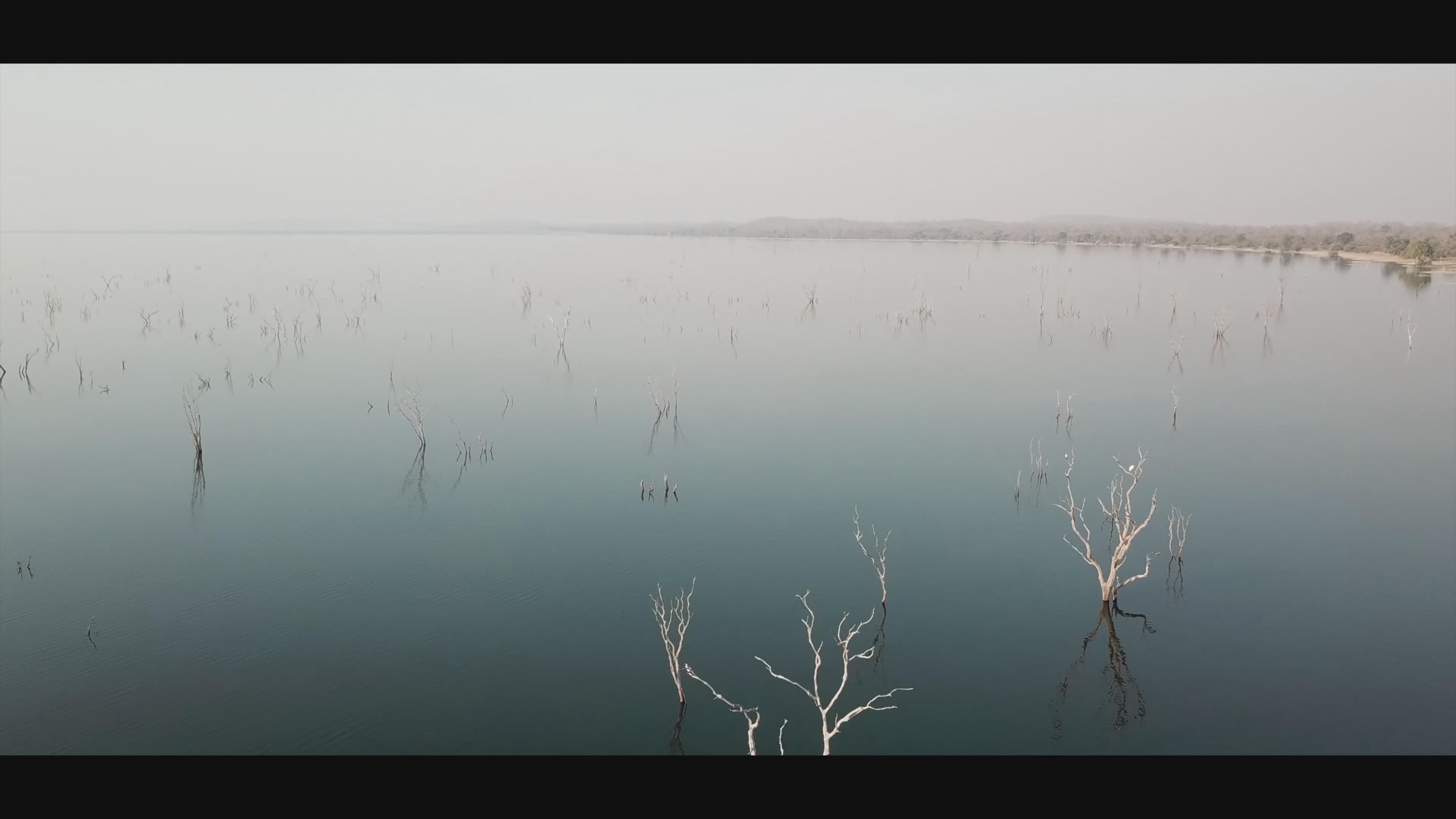 艺术 赞比亚 草原 亚马逊 快艇 捕鱼船 草原 森林 大象 河马 水牛 芭蕉树 芭蕉林 茅草屋 4k
