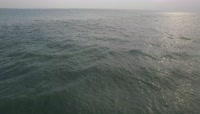 海岛浪潮4K