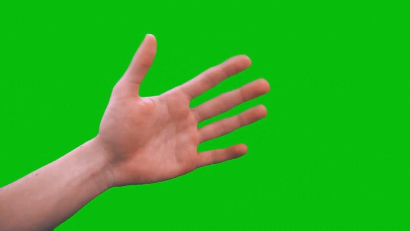 绿屏抠像真人手掌