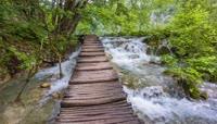大自然清澈的溪水视频素材